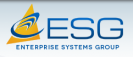 Enterprise Systems Group